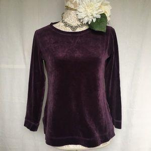 Talbots // Petite Dark Purple Velvet T Shirt